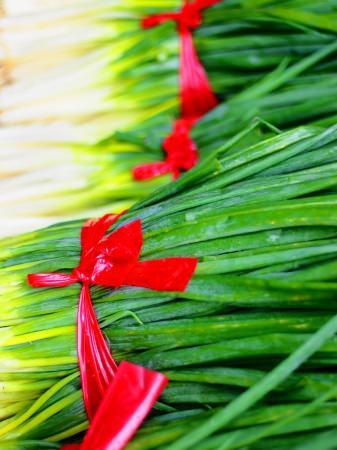 五甲海產店:【台中大安】菇類培養場看超大木耳&採洋蔥與青蔥&五甲海產店吃芋頭大餐。